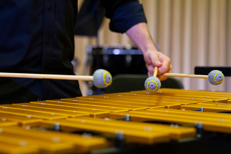 image of percussion instrument