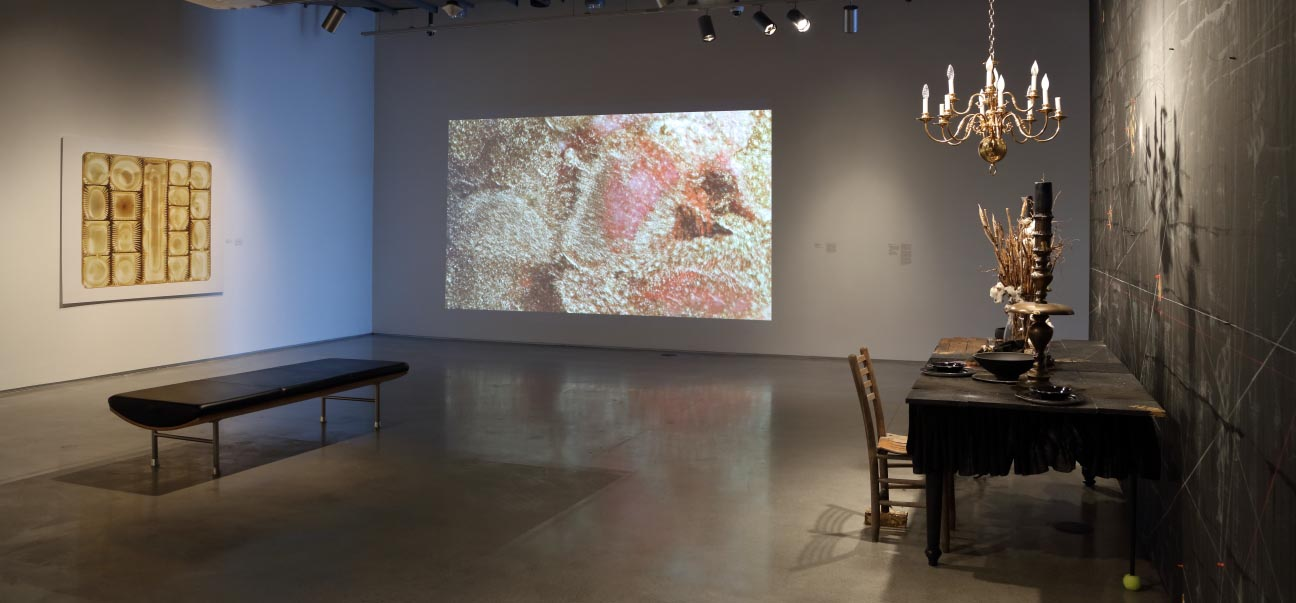 Gut Feelings brings together a group of contemporary artists whose work looks to food, eating, feeding, and cooking as symbolic representations of exchanged emotion or power.